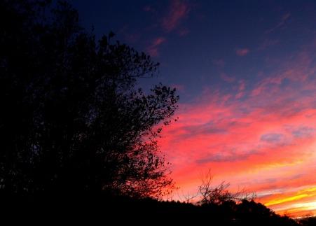 sunrise-landscape-542706_1920