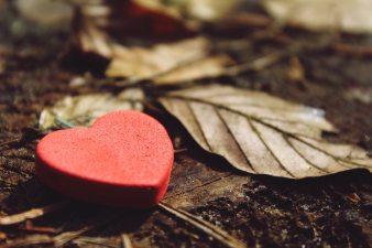 heart-close-up-dirt