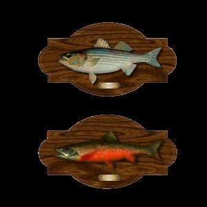 trophy -fish